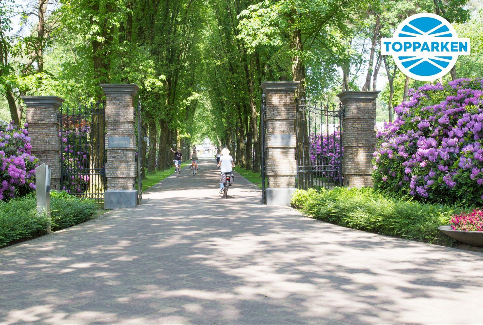 Verblijf op Landgoed de Scheleberg incl  bezoek Airborne
